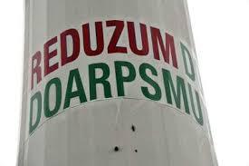 windmolen reduzum