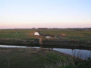 natuur - hegewiersterfield